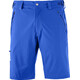 Salomon Wayfarer - Pantalones cortos Hombre - Regular azul